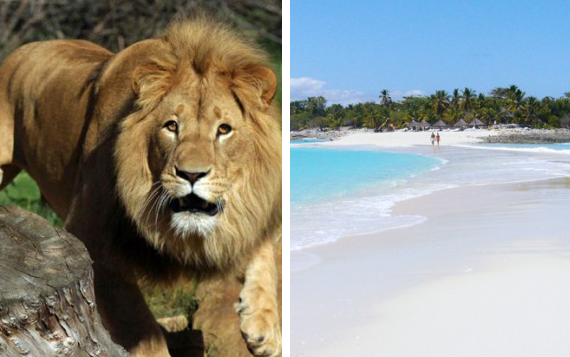 viaggio-vacanze-kenya.png